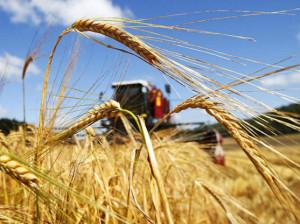 В Азербайджане предложено расширить адресность аграрных субсидий
