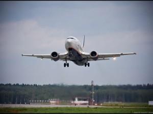 В самолётах российских авиакомпаний появится халяльная еда