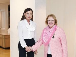 Мехрибан Алиева встретилась с послами Франции, Ирана и Египта 2